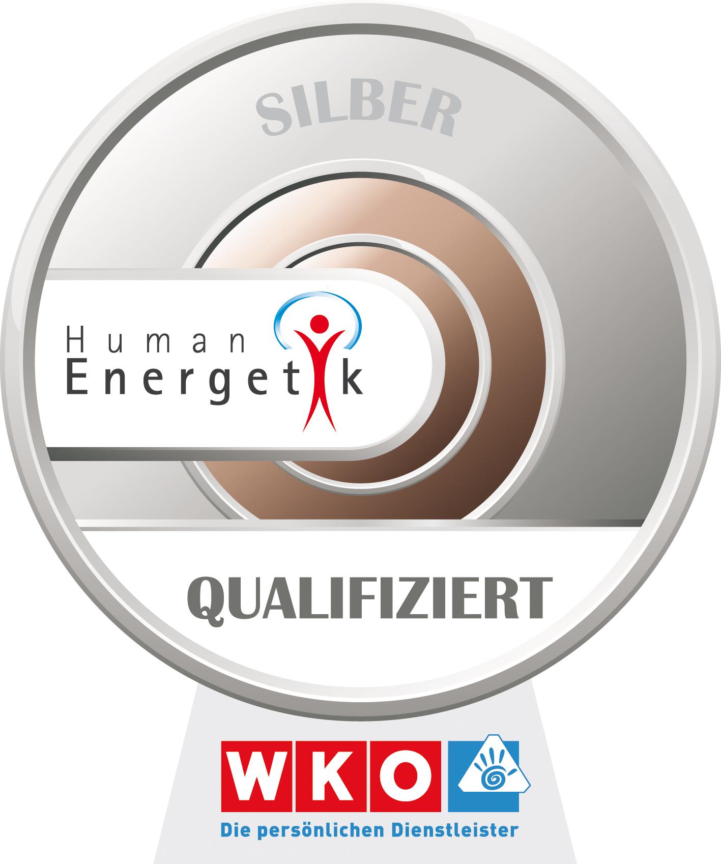 Energetik Abzeichen Silber